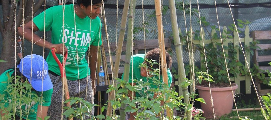 Students working in the garden.